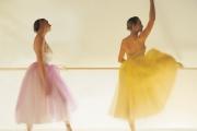Gava ballet